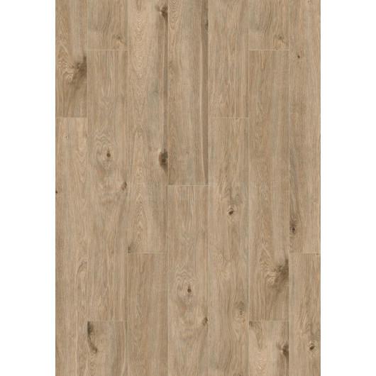 Oak Padua