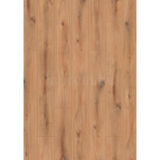 Oak Turin